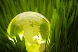 """Artigo - """"Pensar global, agir local… """""""